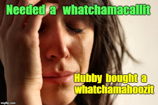 First World Problems -- Whatchamacallit | Needed  a   whatchamacallit Hubby  bought  a        whatchamahoozit | image tagged in memes,first world problems | made w/ Imgflip meme maker
