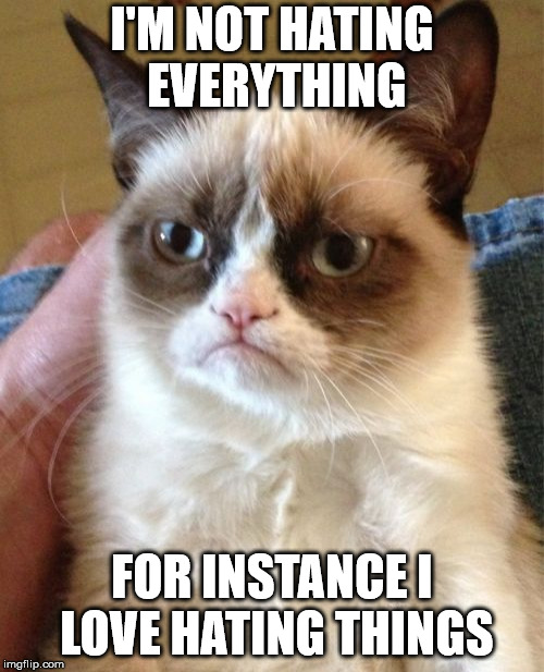 Grumpy Cat Meme | I'M NOT HATING EVERYTHING FOR INSTANCE I LOVE HATING THINGS | image tagged in memes,grumpy cat | made w/ Imgflip meme maker