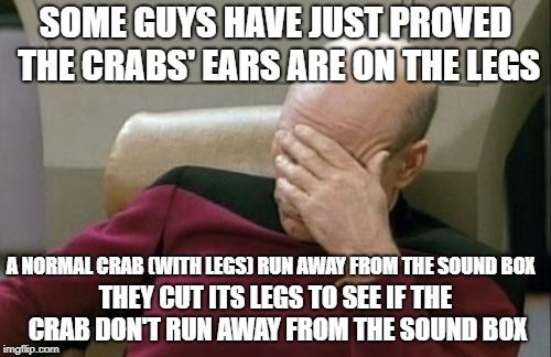 How would the crab run WITHOUT LEGS! what an experiment | SOME GUYS HAVE JUST PROVED THE CRABS' EARS ARE ON THE LEGS THEY CUT ITS LEGS TO SEE IF THE CRAB DON'T RUN AWAY FROM THE SOUND BOX A NORMAL C | image tagged in memes,captain picard facepalm | made w/ Imgflip meme maker