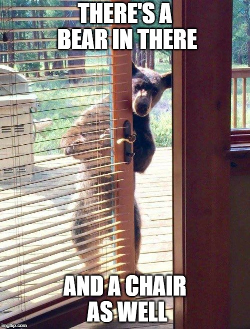 Bear at door | THERE'S A BEAR IN THERE AND A CHAIR AS WELL | image tagged in bear at door | made w/ Imgflip meme maker