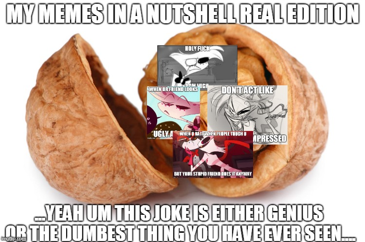 MY MEMES IN A NUTSHELL REAL EDITION | MY MEMES IN A NUTSHELL REAL EDITION ...YEAH UM THIS JOKE IS EITHER GENIUS OR THE DUMBEST THING YOU HAVE EVER SEEN.... | image tagged in funny,in a nutshell,hazbin hotel,memes,angel dust,stupid | made w/ Imgflip meme maker