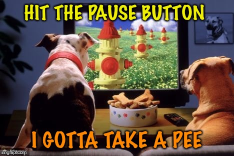 HIT THE PAUSE BUTTON I GOTTA TAKE A PEE | made w/ Imgflip meme maker