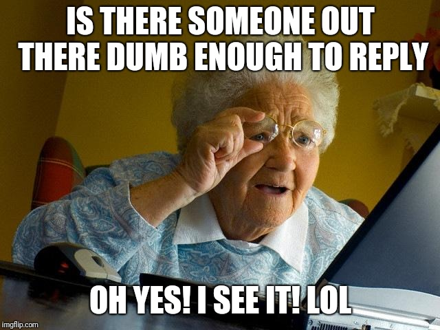 Grandma Finds The Internet Meme | IS THERE SOMEONE OUT THERE DUMB ENOUGH TO REPLY OH YES! I SEE IT! LOL | image tagged in memes,grandma finds the internet | made w/ Imgflip meme maker
