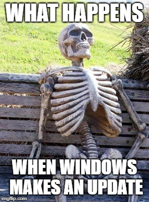 Waiting Skeleton Meme | WHAT HAPPENS WHEN WINDOWS MAKES AN UPDATE | image tagged in memes,waiting skeleton | made w/ Imgflip meme maker