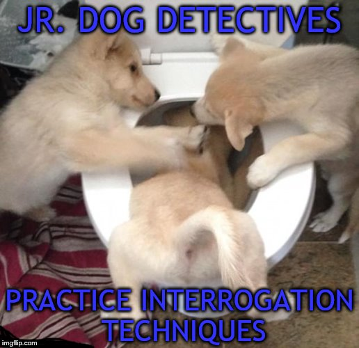 You will speak boy... | JR. DOG DETECTIVES PRACTICE INTERROGATION TECHNIQUES | image tagged in memes,dogs,detectives,interrogation | made w/ Imgflip meme maker