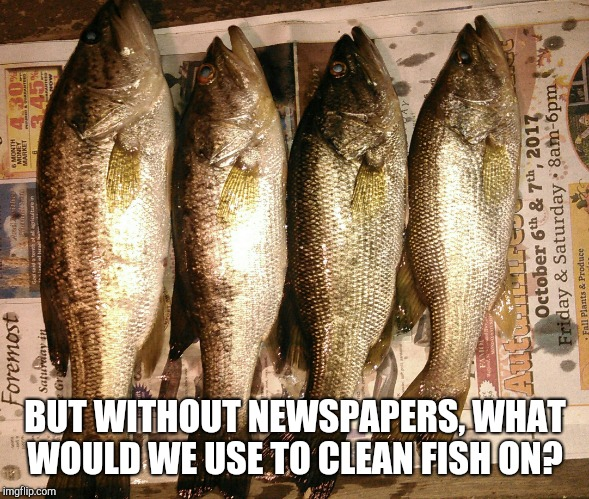 BUT WITHOUT NEWSPAPERS, WHAT WOULD WE USE TO CLEAN FISH ON? | made w/ Imgflip meme maker