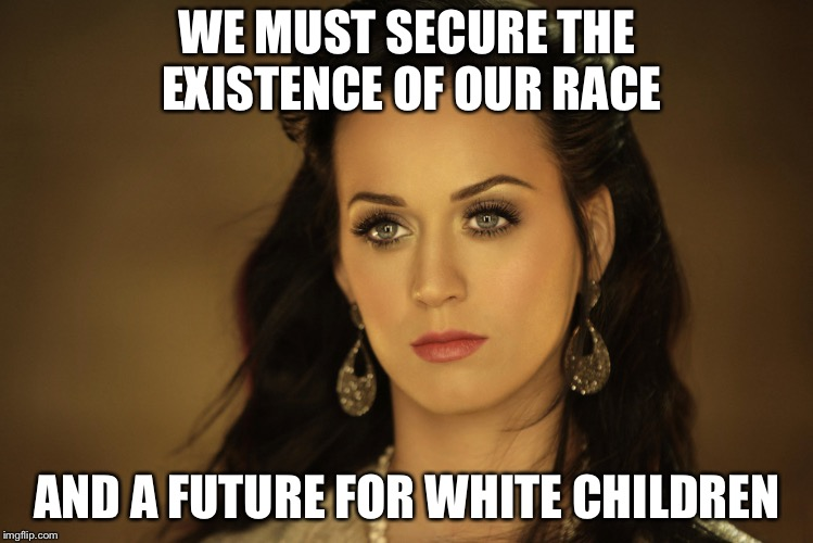 Katy Perry |  WE MUST SECURE THE EXISTENCE OF OUR RACE; AND A FUTURE FOR WHITE CHILDREN | image tagged in katy perry | made w/ Imgflip meme maker