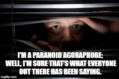 I'M A PARANOID AGORAPHOBE; WELL, I'M SURE THAT'S WHAT EVERYONE OUT THERE HAS BEEN SAYING. | image tagged in paranoid | made w/ Imgflip meme maker