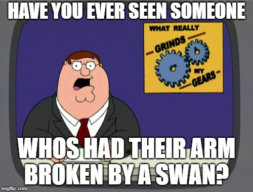 Peter Griffin News Meme | HAVE YOU EVER SEEN SOMEONE WHOS HAD THEIR ARM BROKEN BY A SWAN? | image tagged in memes,peter griffin news | made w/ Imgflip meme maker