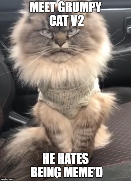 Added him to our repository for you all to abuse. HA HA | MEET GRUMPY CAT V2 HE HATES BEING MEME'D | image tagged in grumpy cat v2 | made w/ Imgflip meme maker