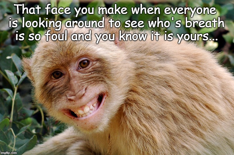 That face... | That face you make when everyone is looking around to see who's breath is so foul and you know it is yours... | image tagged in foul breath,yours | made w/ Imgflip meme maker