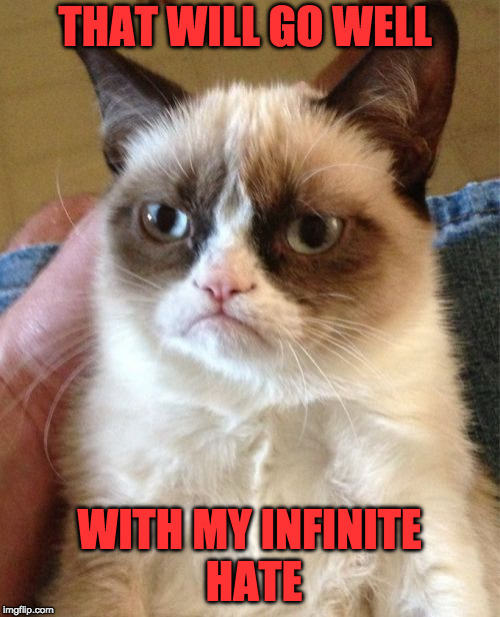 Grumpy Cat Meme | THAT WILL GO WELL WITH MY INFINITE HATE | image tagged in memes,grumpy cat | made w/ Imgflip meme maker
