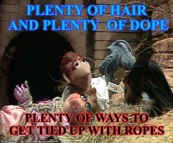 PLENTY OF HAIR AND PLENTY  OF DOPE PLENTY OF WAYS TO GET TIED UP WITH ROPES | made w/ Imgflip meme maker