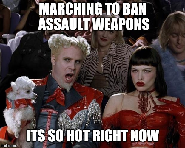 popular gun control | MARCHING TO BAN ASSAULT WEAPONS ITS SO HOT RIGHT NOW | image tagged in memes,mugatu so hot right now | made w/ Imgflip meme maker