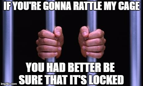 Prison Bars | IF YOU'RE GONNA RATTLE MY CAGE YOU HAD BETTER BE SURE THAT IT'S LOCKED | image tagged in prison bars,random | made w/ Imgflip meme maker