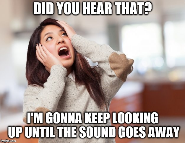 DID YOU HEAR THAT? I'M GONNA KEEP LOOKING UP UNTIL THE SOUND GOES AWAY | made w/ Imgflip meme maker