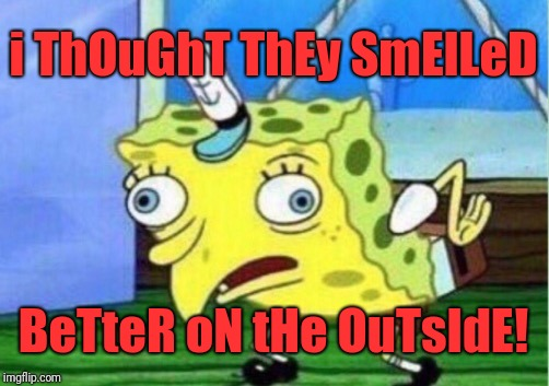 Mocking Spongebob Meme | i ThOuGhT ThEy SmElLeD BeTteR oN tHe OuTsIdE! | image tagged in memes,mocking spongebob | made w/ Imgflip meme maker