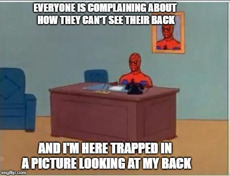 Spider-Man Framed | EVERYONE IS COMPLAINING ABOUT HOW THEY CAN'T SEE THEIR BACK AND I'M HERE TRAPPED IN A PICTURE LOOKING AT MY BACK | image tagged in spiderman computer desk,spiderman | made w/ Imgflip meme maker