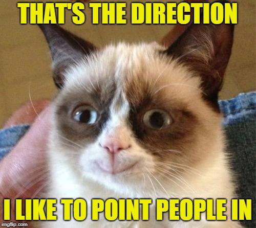 THAT'S THE DIRECTION I LIKE TO POINT PEOPLE IN | made w/ Imgflip meme maker