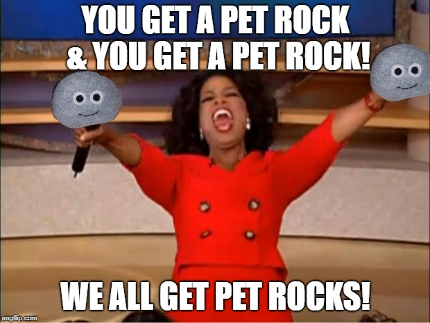Oprah You Get A Meme | YOU GET A PET ROCK & YOU GET A PET ROCK! WE ALL GET PET ROCKS! | image tagged in memes,oprah you get a | made w/ Imgflip meme maker