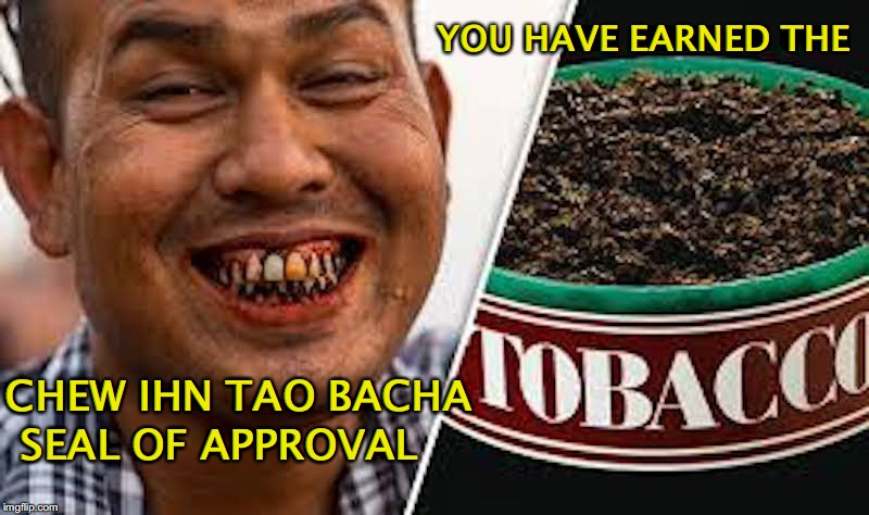 CHEW IHN TAO BACHA SEAL OF APPROVAL YOU HAVE EARNED THE | made w/ Imgflip meme maker
