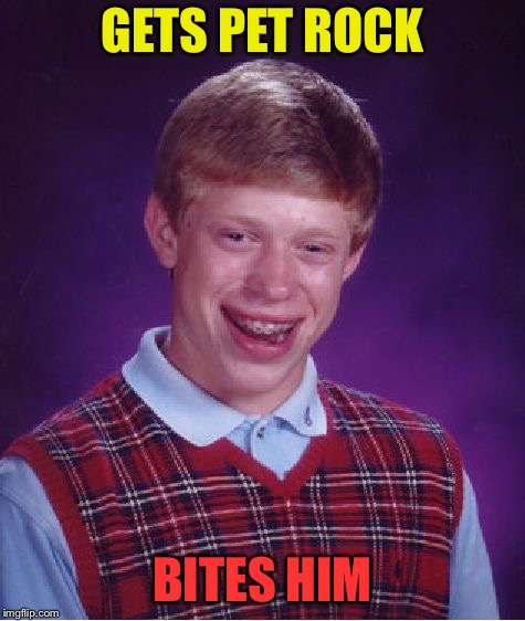 Bad Luck Brian Meme | GETS PET ROCK BITES HIM | image tagged in memes,bad luck brian | made w/ Imgflip meme maker