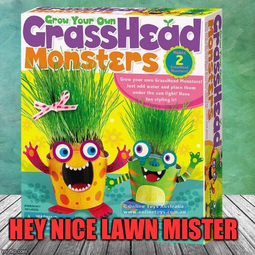 HEY NICE LAWN MISTER | made w/ Imgflip meme maker
