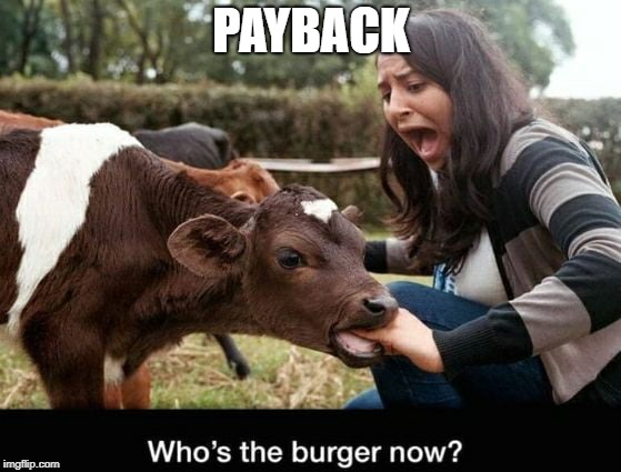 When Food Bites Back | PAYBACK | image tagged in burger,payback | made w/ Imgflip meme maker