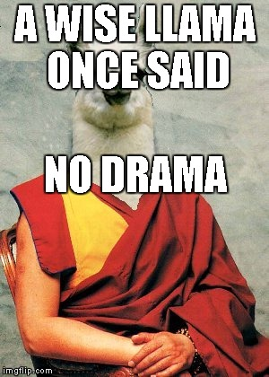 A WISE LLAMA ONCE SAID NO DRAMA | made w/ Imgflip meme maker