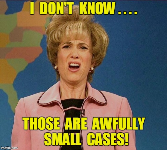 I  DON'T  KNOW . . . . THOSE  ARE  AWFULLY  SMALL  CASES! | made w/ Imgflip meme maker