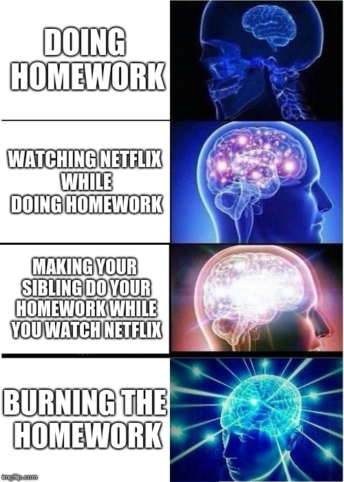 Expanding Brain Meme | DOING HOMEWORK WATCHING NETFLIX WHILE DOING HOMEWORK MAKING YOUR SIBLING DO YOUR HOMEWORK WHILE YOU WATCH NETFLIX BURNING THE HOMEWORK | image tagged in memes,expanding brain | made w/ Imgflip meme maker