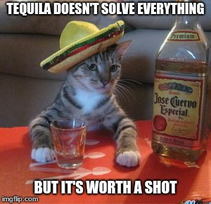 Mexican Cat | TEQUILA DOESN'T SOLVE EVERYTHING BUT IT'S WORTH A SHOT | image tagged in mexican cat | made w/ Imgflip meme maker