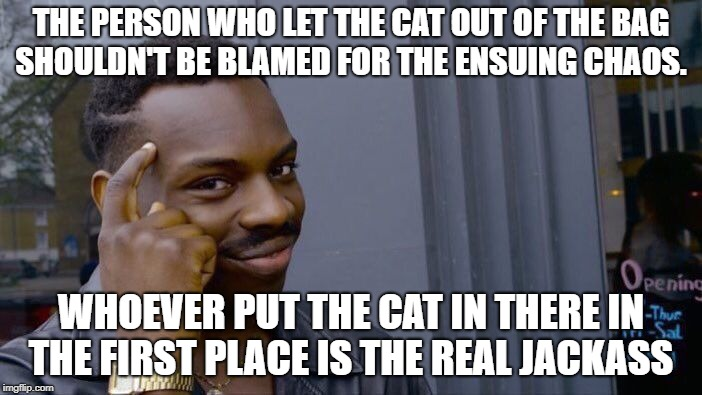 i got bored and wanted to post something and well the cats out of the bag on that idea as well | THE PERSON WHO LET THE CAT OUT OF THE BAG SHOULDN'T BE BLAMED FOR THE ENSUING CHAOS. WHOEVER PUT THE CAT IN THERE IN THE FIRST PLACE IS THE  | image tagged in memes,roll safe think about it | made w/ Imgflip meme maker