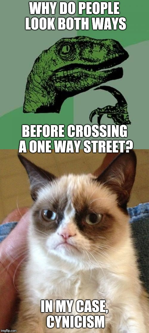 Talkin' 'bout Human Nature | WHY DO PEOPLE LOOK BOTH WAYS IN MY CASE, CYNICISM BEFORE CROSSING A ONE WAY STREET? | image tagged in philosoraptor,grumpy cat,memes,human stupidity,nature | made w/ Imgflip meme maker