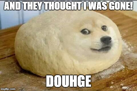 dough doge |  AND THEY THOUGHT I WAS GONE! DOUHGE | image tagged in dough doge | made w/ Imgflip meme maker