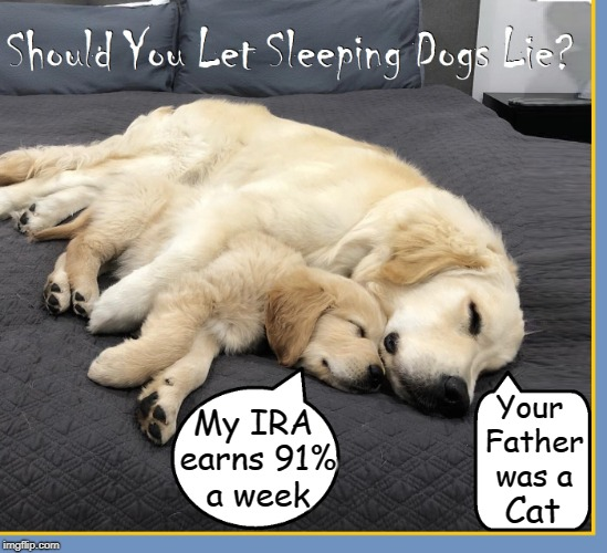 Lying Dogs | Your Father was a Cat My IRA earns 91% a week | image tagged in vince vance,let sleeping dogs lie,golden retriever,cute puppies,dogs,lies | made w/ Imgflip meme maker