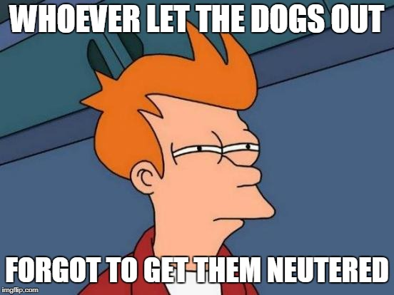 Futurama Fry Meme | WHOEVER LET THE DOGS OUT FORGOT TO GET THEM NEUTERED | image tagged in memes,futurama fry | made w/ Imgflip meme maker