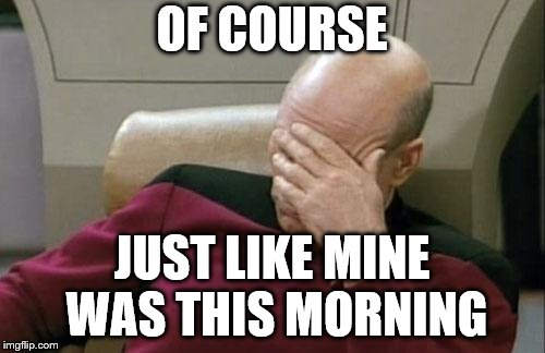 Captain Picard Facepalm Meme | OF COURSE JUST LIKE MINE WAS THIS MORNING | image tagged in memes,captain picard facepalm | made w/ Imgflip meme maker