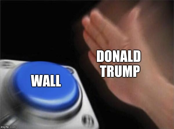Blank Nut Button Meme | DONALD TRUMP WALL | image tagged in memes,blank nut button | made w/ Imgflip meme maker