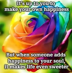 It's up to you to make your own happiness But when someone adds happiness to your soul, it makes life even sweeter | image tagged in sunshine | made w/ Imgflip meme maker