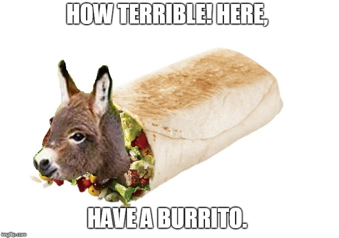 burrito | HOW TERRIBLE! HERE, HAVE A BURRITO. | image tagged in burrito | made w/ Imgflip meme maker