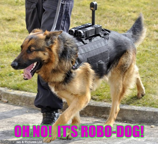 OH NO!  IT'S ROBO-DOG! | made w/ Imgflip meme maker