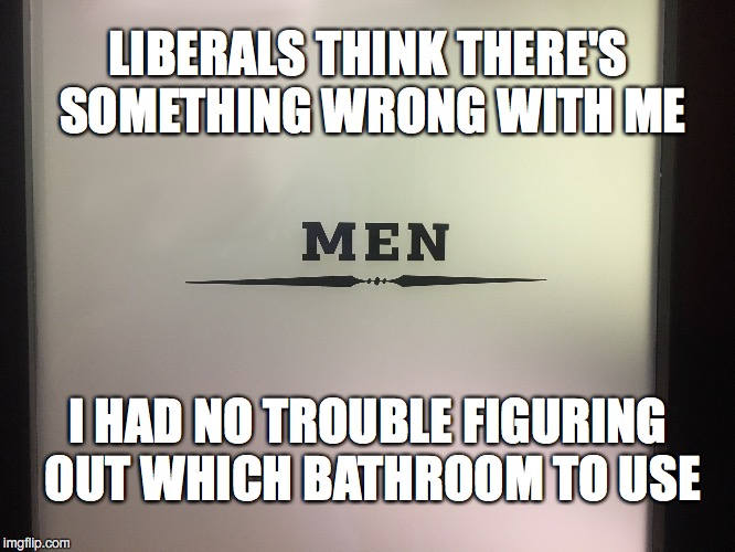Bathrooms - No Problem | LIBERALS THINK THERE'S SOMETHING WRONG WITH ME I HAD NO TROUBLE FIGURING OUT WHICH BATHROOM TO USE | image tagged in men,bathroom,transgender bathroom | made w/ Imgflip meme maker