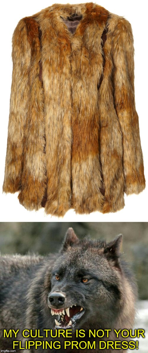 Wolves have something to say about this atrocity! | MY CULTURE IS NOT YOUR FLIPPING PROM DRESS! | image tagged in memes,culture,dress | made w/ Imgflip meme maker