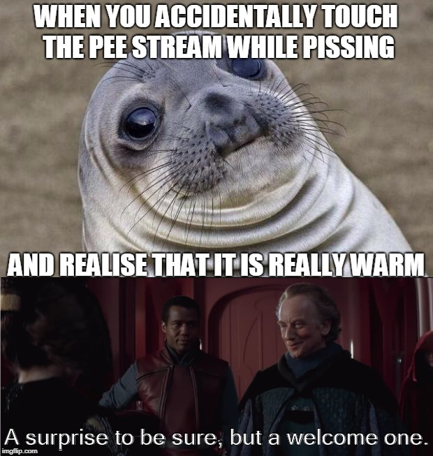 Piss is warm | WHEN YOU ACCIDENTALLY TOUCH THE PEE STREAM WHILE PISSING AND REALISE THAT IT IS REALLY WARM A surprise to be sure, but a welcome one. | image tagged in piss,star wars prequels | made w/ Imgflip meme maker