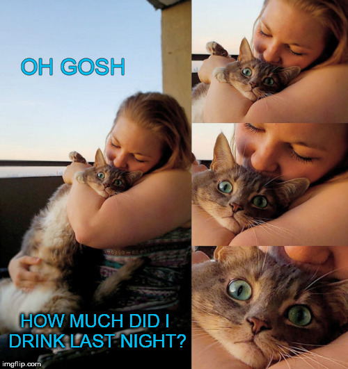 OH GOSH HOW MUCH DID I DRINK LAST NIGHT? | made w/ Imgflip meme maker