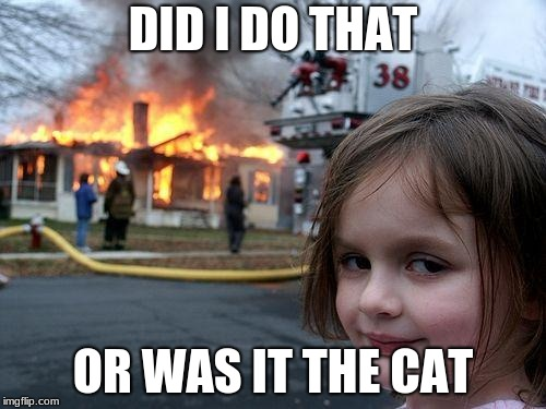 Disaster Girl Meme | DID I DO THAT OR WAS IT THE CAT | image tagged in memes,disaster girl | made w/ Imgflip meme maker