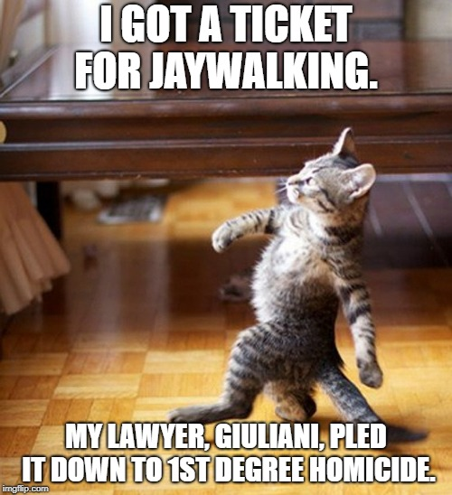 Cat Walking Like A Boss | I GOT A TICKET FOR JAYWALKING. MY LAWYER, GIULIANI, PLED IT DOWN TO 1ST DEGREE HOMICIDE. | image tagged in cat walking like a boss,giuliani | made w/ Imgflip meme maker
