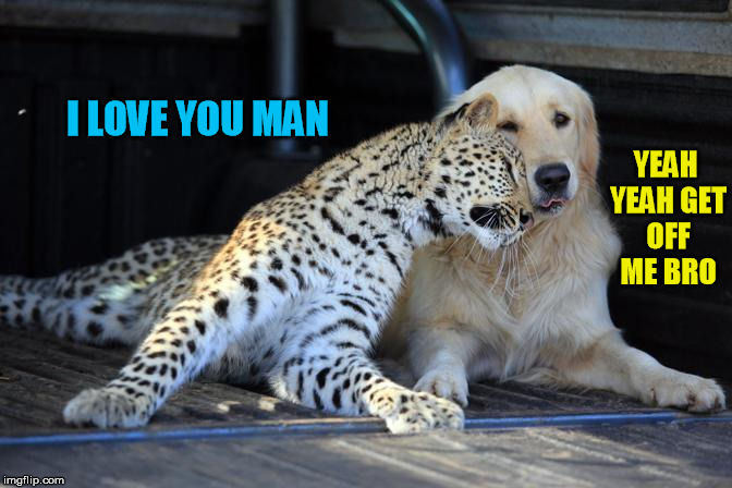 I LOVE YOU MAN YEAH YEAH GET OFF ME BRO | made w/ Imgflip meme maker