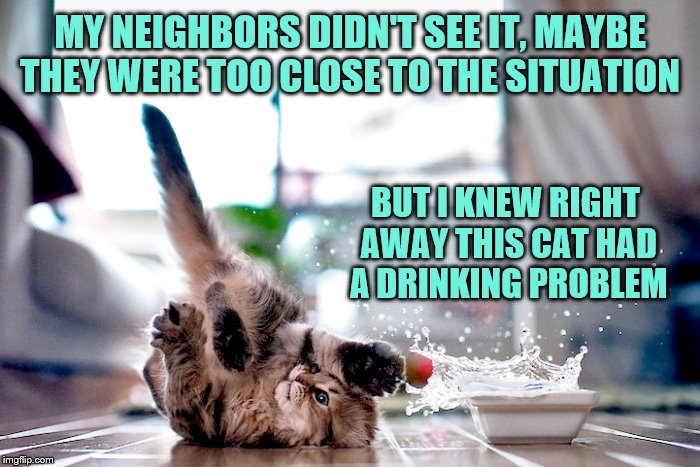 A somewhat repost of one I did a couple of years ago, but it's cat week.  | MY NEIGHBORS DIDN'T SEE IT, MAYBE THEY WERE TOO CLOSE TO THE SITUATION BUT I KNEW RIGHT AWAY THIS CAT HAD A DRINKING PROBLEM | image tagged in memes,cats,kitten,drinking problem,ken i haz gin | made w/ Imgflip meme maker